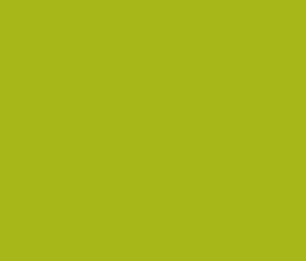 Quisque Gravida luctus
